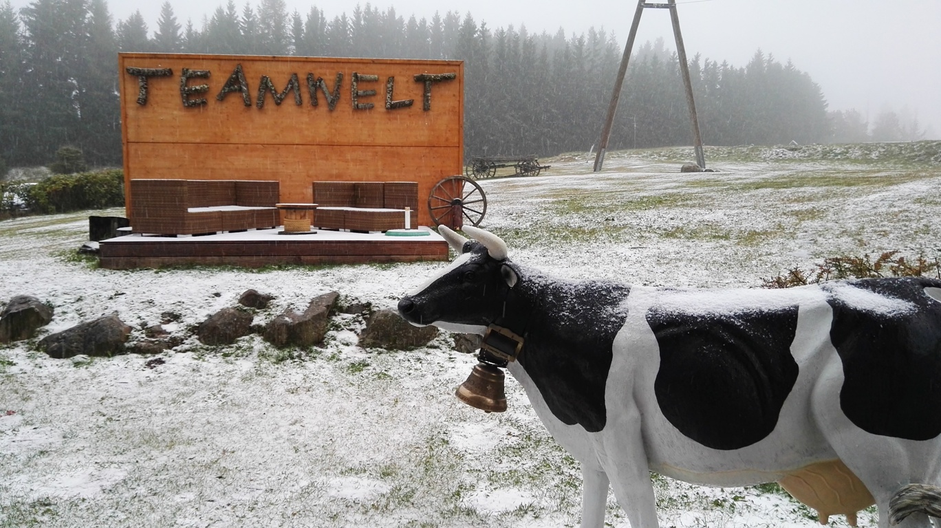 erster Schnee für Weihnachtsfeiern am Hochrhein